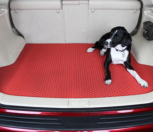 lloyd rubbertite floor mat cargo dog